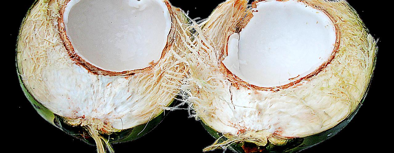 kókuszháncs